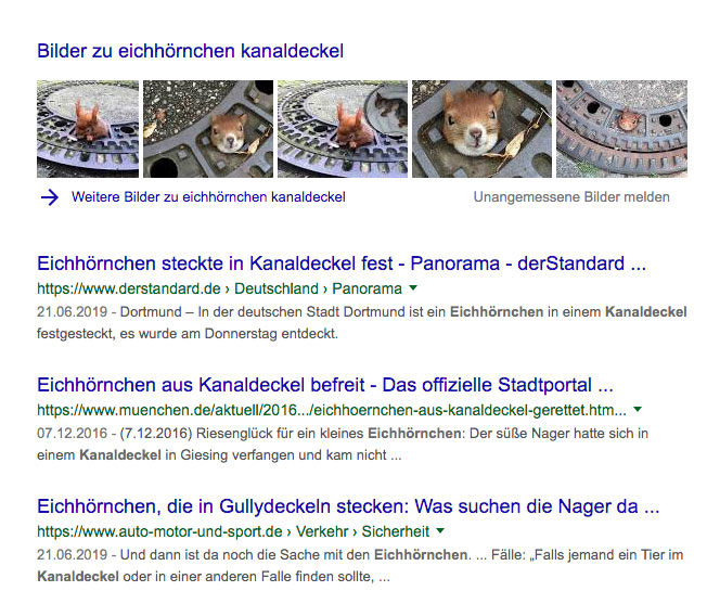 Google-Suchergebnisse zu Eichhörnchen-Kanaldeckel