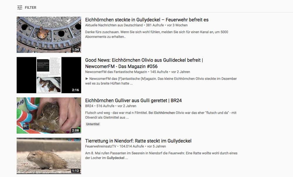 Youtube-Suche Eichhörnchen im Gullideckel
